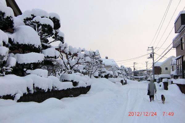 ooyukinoasa121224.jpg
